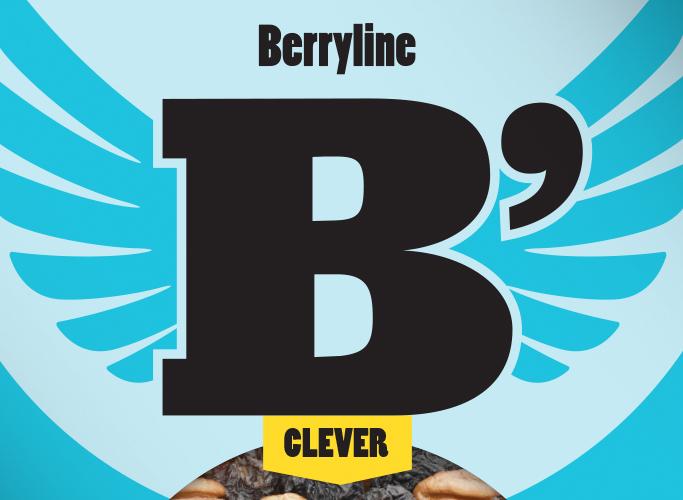 Das Berryline Logo im Detail